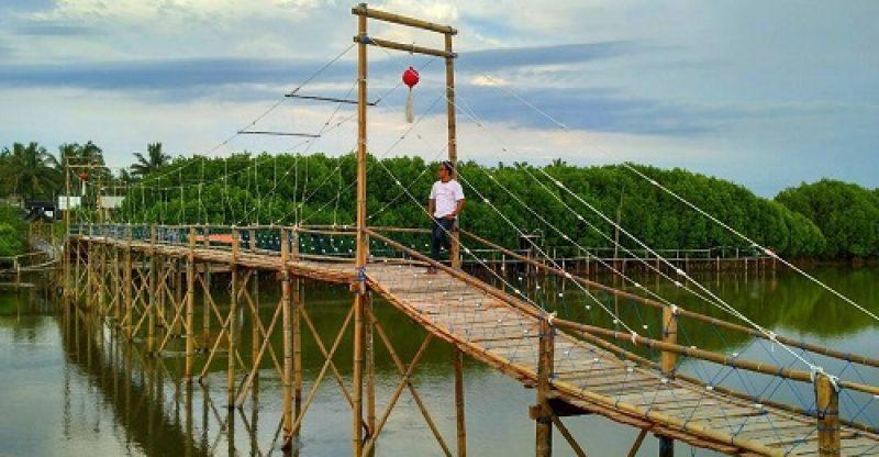 jembatan mangrove wanatirta